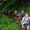 A group makes its way along the Maunawili Trail towards the Pali