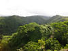 Looking towards the Koolau Mountains from the Manana Trail