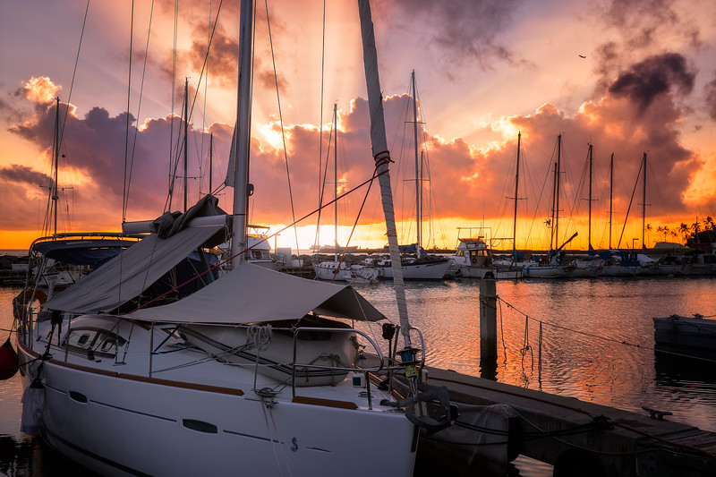 Ala Wai Yacht Harbor
