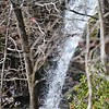 The Peavine Falls