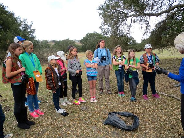 Oak Ambassador Birding Hike