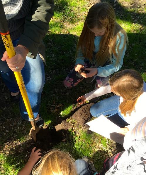 Oak Ambassador Soil and Watershed Training Hike