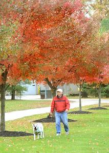 TT Fall Colors