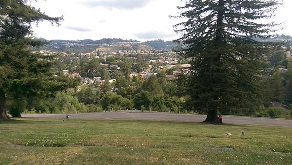 Oakland may 2015