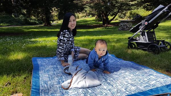 Golden Gate Park and Japanese Garden, April 2, 2016