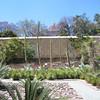 Jardin etnobotanico 3