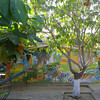 The Mural Adorned School Behind The Bright Wall