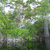 The 6km Protected Lagoon Is A Treat For Bird And Nature Lovers