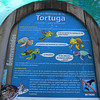 The Center Researchs, Breeds And Displays Turtles And Fish