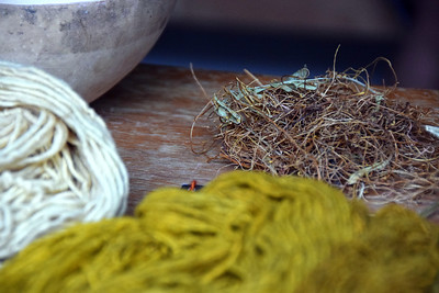 Natural dyes used in handwoven rugs, La Familia de Los Angeles, Teotitlán del Valle