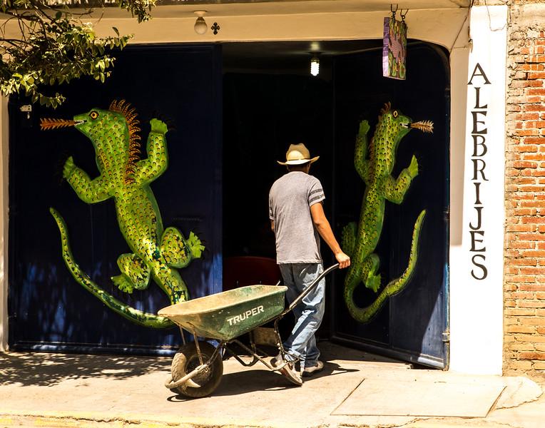 Alligator Doors