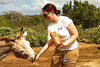 Donkey sanctuary in Bonaire