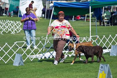botc2011-rally-0789