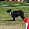 dpdtc_rally_2012-125