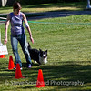 dpdtc_rally_2012-002