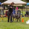 dmkc_rally_2012-0654