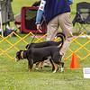dmkc_rally_2012-0671