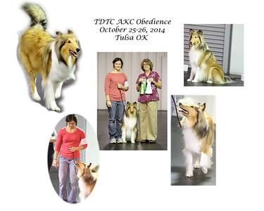 TDTC AKC Obedience 10-26-2014