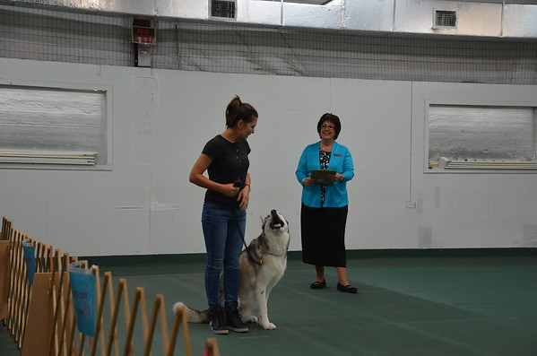 2017 May Obedience Trial - Day 1