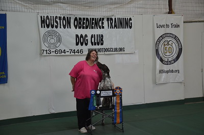 2017 October Rally / Obedience Trials