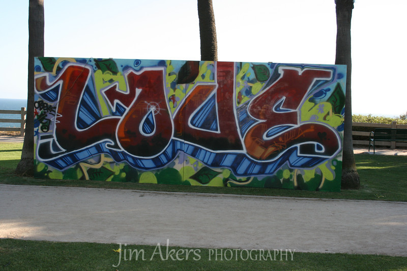 This shot was taken in Palisades Park, Santa Monica.  I like the graffiti look.
