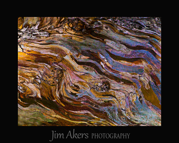 """Eucalyptus Abstract"" This is actually the bark of a eucalyptus tree. It was photographed vertically but looks better horizontal or landscape style. This photo recently won Best of Class in the Fine Art/Still Life Category, Judges Choice and a merit at the Santa Clarity Valley Photography Association. Spring 2014"