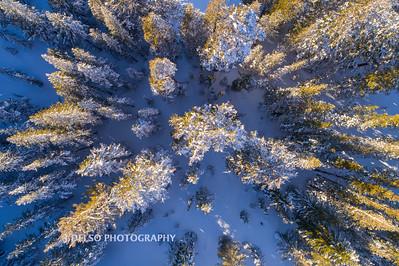Carson Pass Winter 2017-10