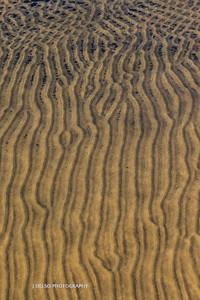 Sand Patterns 2015-2533