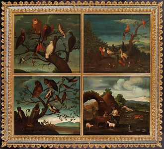 José Guiol, Birds of Mexico, from Diptych Fine Art