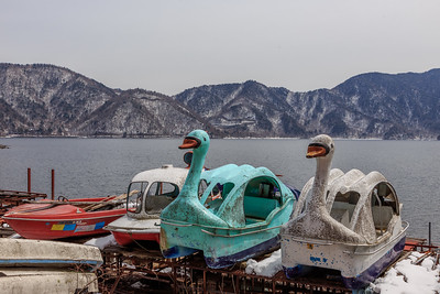 The ulgy duck boats' demise. I really hate these boats in the form of ducks and how they can destroy an otherwise beautiful scenery. Here some of them have met their fateg!