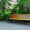 Wood Park Bench