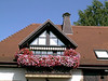 House with Flowers in Rothenberg