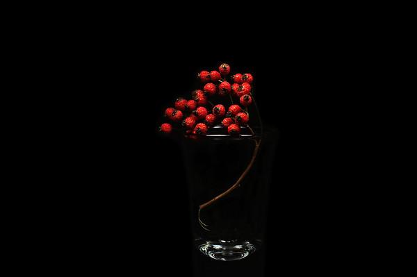 berry shot