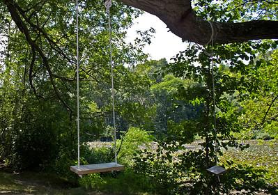 Pair Of Rope Swings