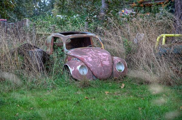 Rusty Car - Metchosin, Vancouver Island, BC, Canada