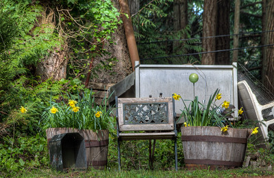 Bench and Flowers - Vancouver Island, British Columbia, Canada