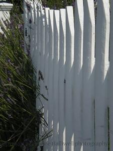 island fence