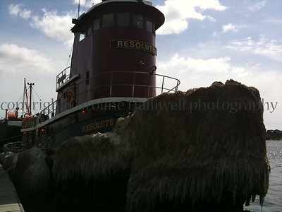 a moustached tug boat