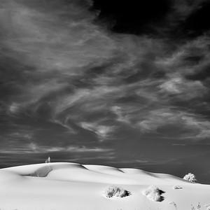 Dreams and Dunes