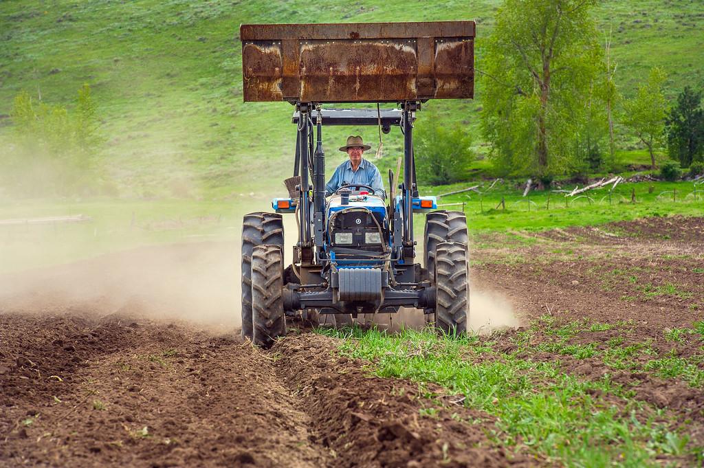 Patrick Theil plows before planting his spring potato crop