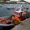 Greenpeace Pesca