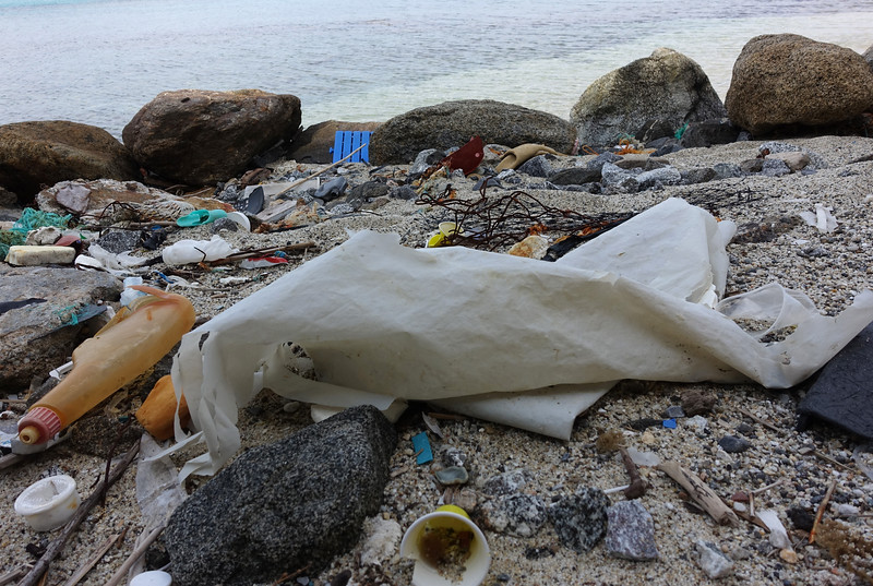 Plastic Waste on a Beach in Italy