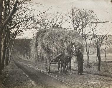 The Farming