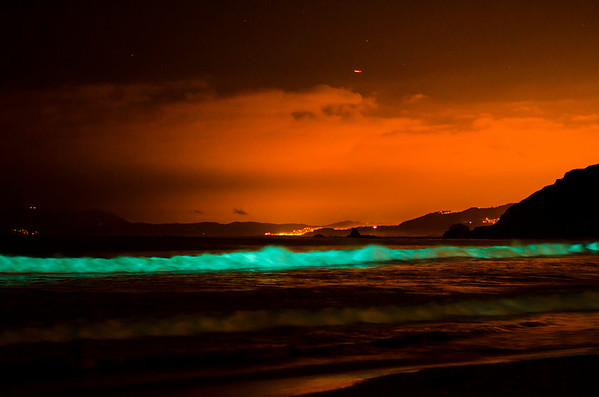 10-12-12 Bioluminescene Waves Pacifica-6112