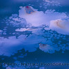 abstract-ocean surface 2012 03-10 SB Channel-a-011 - Copy