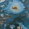 abstract ocean surface 2016 05-04 SB Coast-a-018
