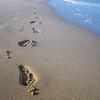 Fort Lauderdale Beach footsteps