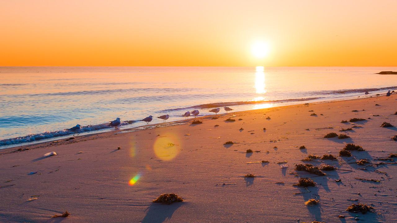 Enjoying the Sunrise