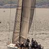 Newport_Bermuda_2014_george_bekris_June-20-2014_-730