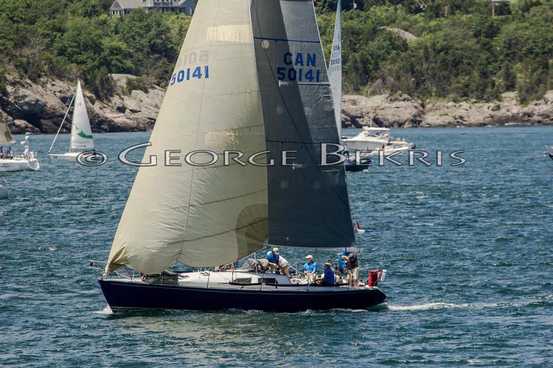 Newport_Bermuda_2014_george_bekris_June-20-2014_-177